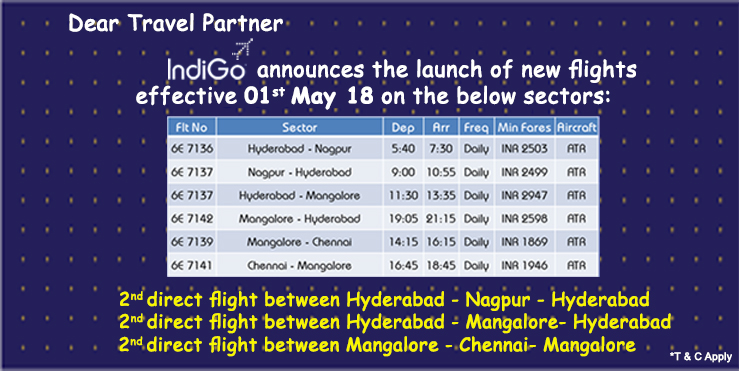 Indigo new flights